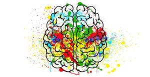 החוויה הסומטית – Somatic Experiencing (SE)